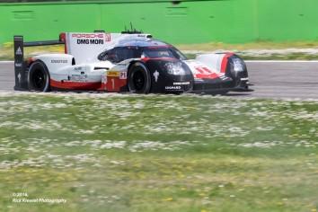 #1 Porsche 919 Hybrid | Neel Jani / André Lotterer / Nick Tandy